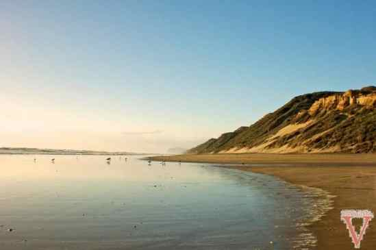 dargaville bayleys beach