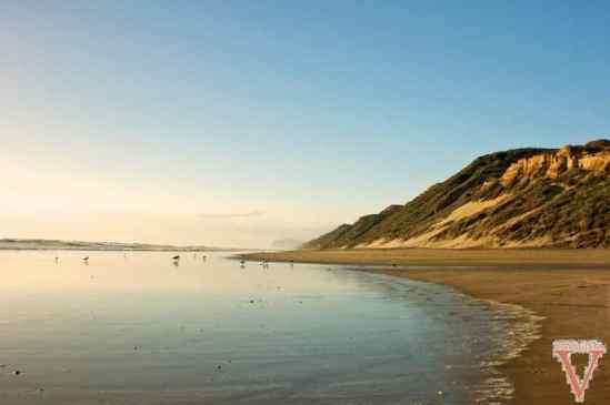 dargaville bayleys beach