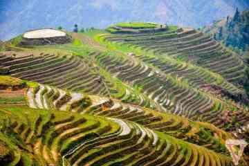 Pingan rizières guilin