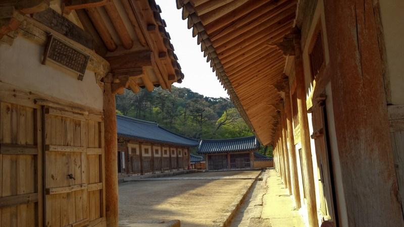 haiensa coree