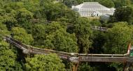 Tree top walkway from the air