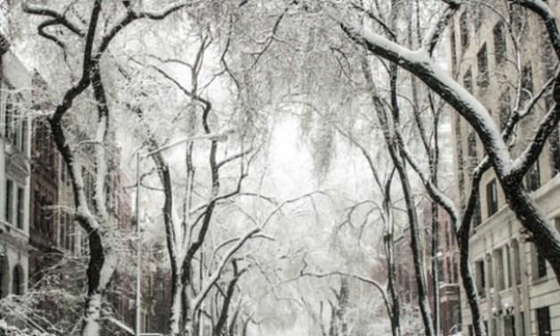 Hur man gör för att överleva vintern