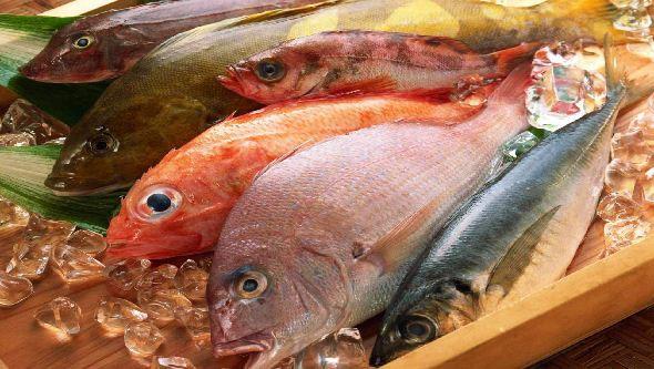 peixee