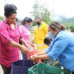 Dota de Programa Alimentario alcaldesa Marina Ponce a familias de barrios en Landa de Matamoros