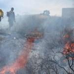 Incendios forestales afectan mas de 20 Municipios de Zacatecas