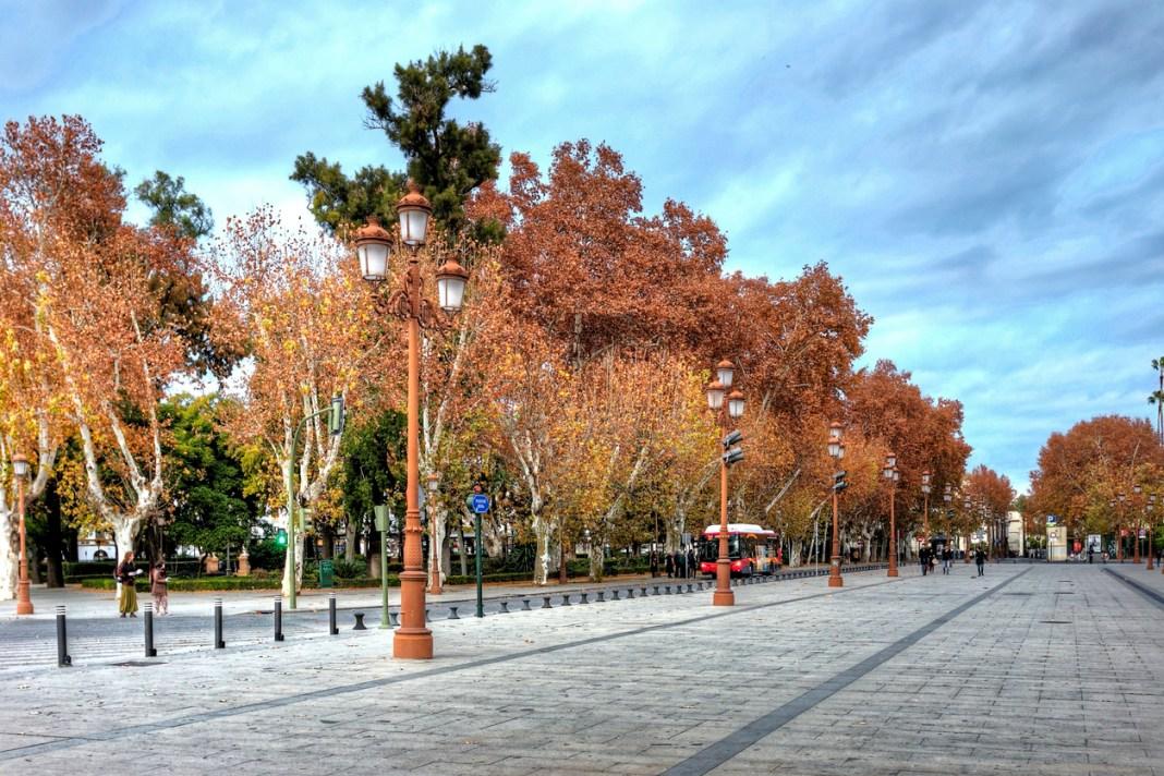 Otoño en Sevilla