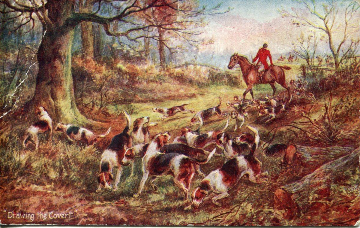 Fox Hunting Vintage Postcards