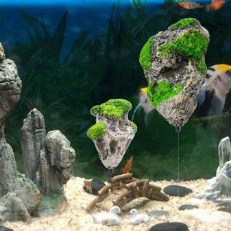 Камни для аквариума: виды, применение и уход kamni dlya akvariuma vidy vybor i primenenie 7 AquaDeco Shop