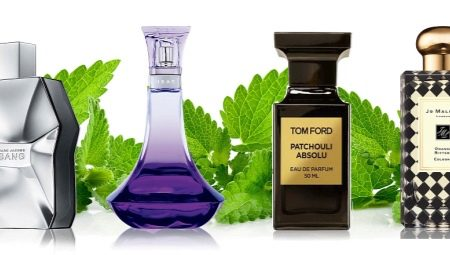 Fragrance patchouli sa pabango