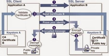 SSL protocol https