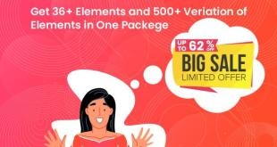 Element Plus Offer
