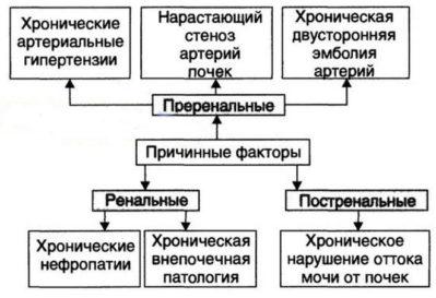 inkstų hipertenzijos simptomų gydymas liaudies gynimo priemonėmis)