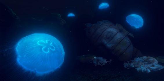 Ocean DIVR Jellyfish