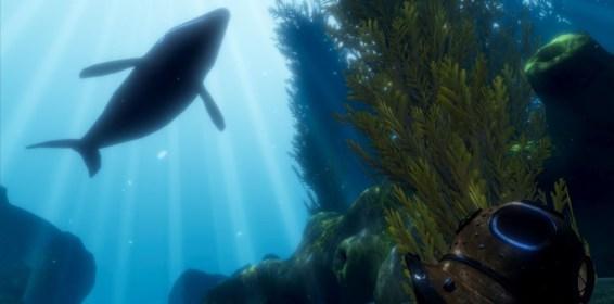 Ocean DIVR Whale