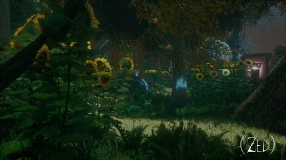 zed-screenshot-forest