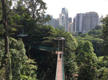 Тропический лес в центре города Bukit Nanas и веревочный городок