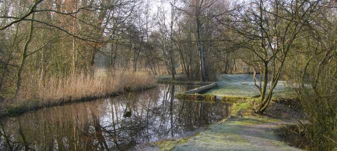 Natuurtuin Zoetermeer: Winterwandelingen met gids op zondag 22 december en op Nieuwjaarsdag.