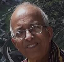 Hemendra B Joshi