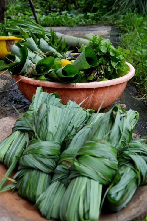 Monsoon harvest