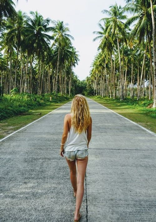 Palmtree roads Siargao