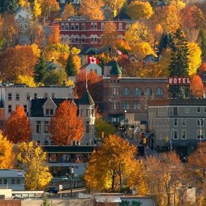 Nelson Fall Colours