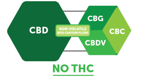 CBD Molecules-03