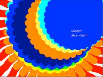 2C - Connor