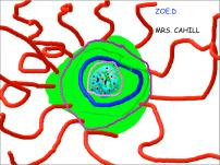 2C - ZOE