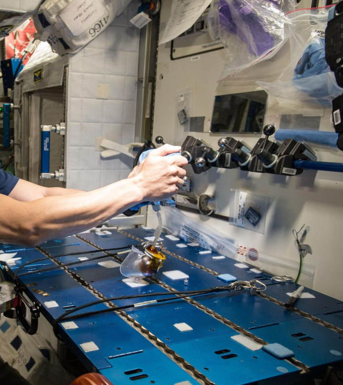 NASA astronaut Kjell Lindgren filling a capillary beverage cup with hand brewer copy – photo from NASA