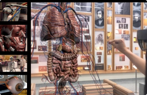Explore the human body with AnatomyX