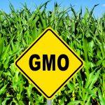 GMO-sign-150x150