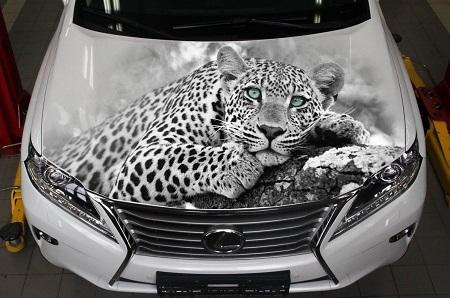 3D аэрография – произведение искусства на автомобиле