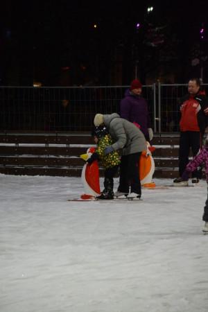 учимся стоять на льду