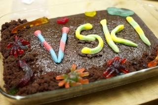 VSki 2012 cake