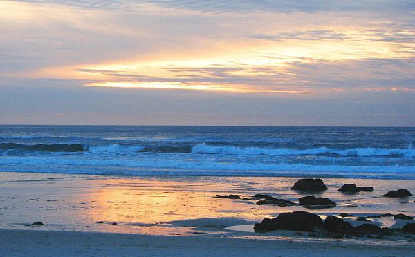 Innovate, Relax and Refresh with VSee CEO at 2018 ACHT Asilomar Conference & Refuge By The Sea: Nov. 7-10
