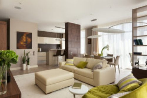 Эко стиль в интерьере гостиной-2