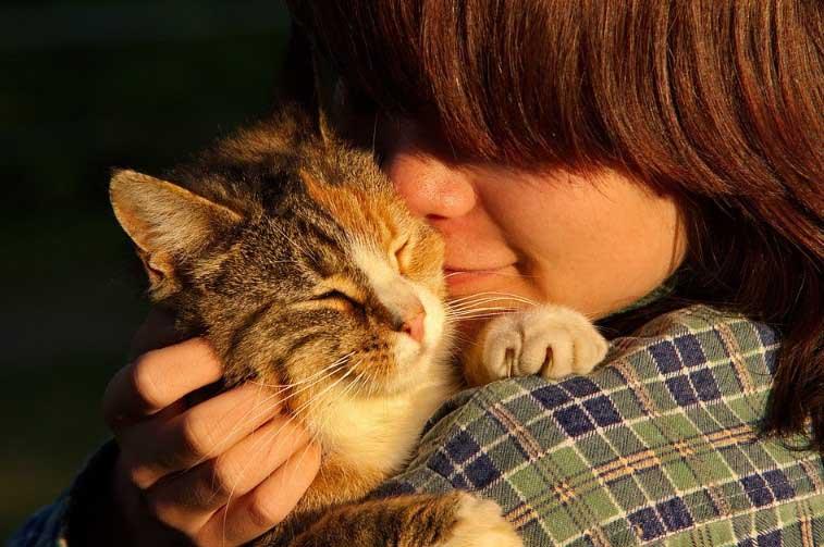 Какво значи ако котка ближе стопанина си