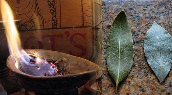 запалете дафинов лист