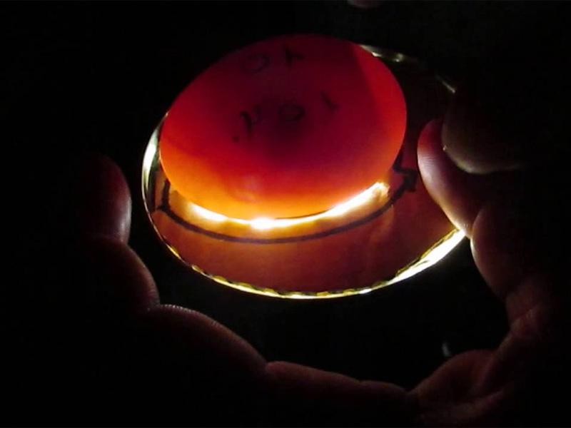 Овоскопирование гусиных яиц на 21 день развития