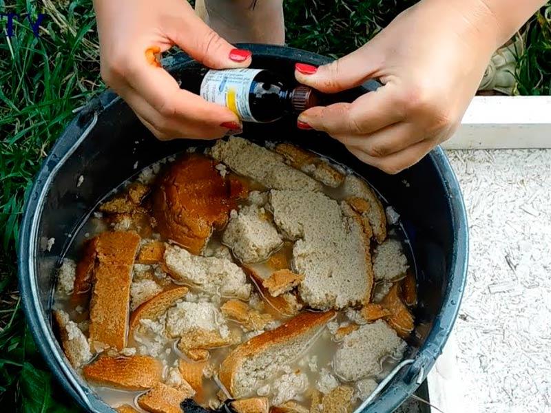 Йод с хлебом для огурцов