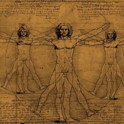 Какие части тела растут у человека всю жизнь
