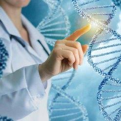 Начали продавать генную терапию для продления жизни