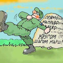 Сколько мужчин Кировской области проходили службу в армии