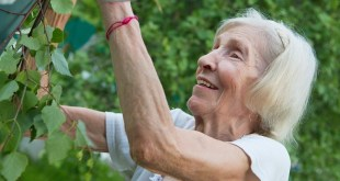 83-ročná žena napísala list svojej priateľke. Jej slová vás chytia za srdce…