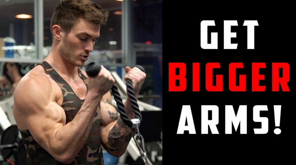 Feature   Best Arm Workouts For Big Biceps and Triceps   arm exercises
