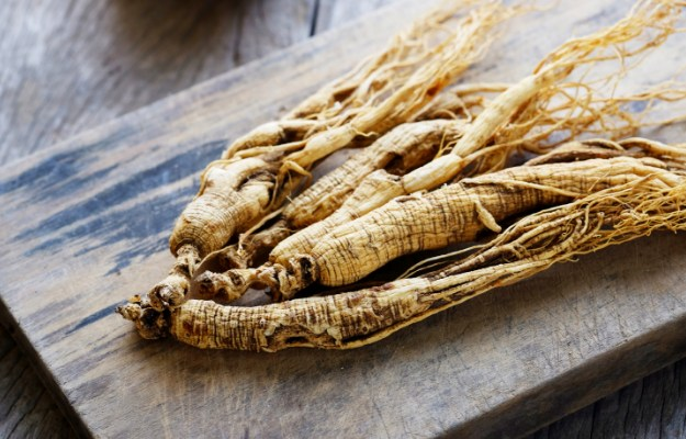 American Panax Ginseng | Must-Haves In Your Testosterone Supplement