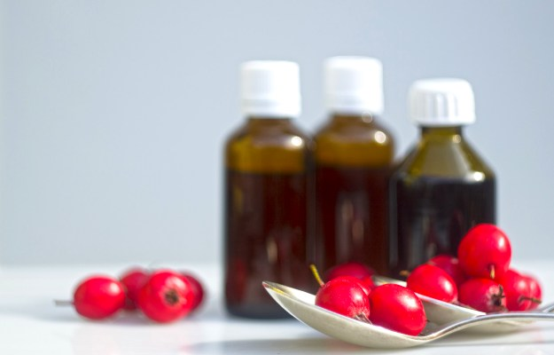 Hawthorn Berry Extract (Crategus Leavigata) | Must-Haves In Your Testosterone Supplement