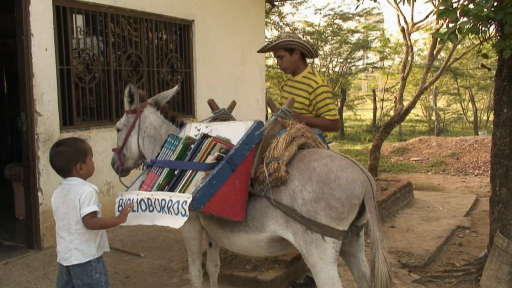 Книжкові віслюки
