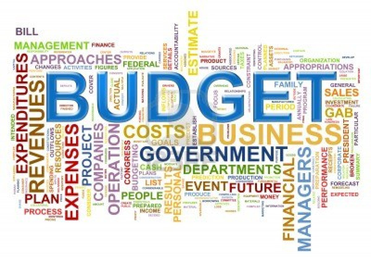 Image result for government budget