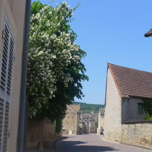 Meursault.